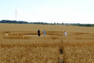 Crop Circle at Mezi obcemi, Czech Republic, 28 July 2013