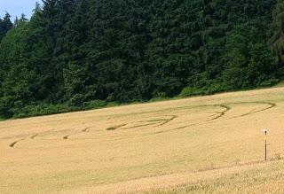 Crop Circle at Rohoznα-Osek, Czech Republic, 18 July 2013
