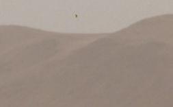 UFO-ARIS3